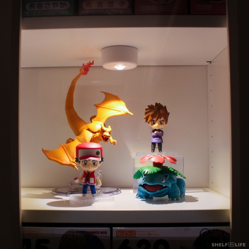 Pokemon Display